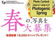 春の写真を大募集!フォトコンテストPhotogenic Springを開催