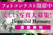 """新年号""""令和""""にちなんだ美しい写真を募集する 「Beautiful Harmony」フォトコンテストを5月31日(金)まで開催中!"""