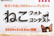 「ねこフォトコンテスト」を2月22日(土)まで開催中!