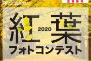 秋の写真作品を大募集 「紅葉フォトコンテスト」開催中!